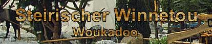 Steirischer Winnetou